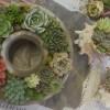多肉植物のセメントリース作り